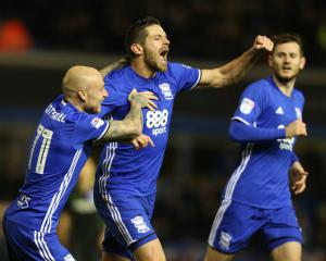 Birmingham to complete £1m signing of Lukas Jutkiewicz from Burnley in January