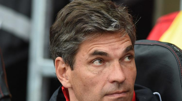Pellegrino expects further stability under Southampton's new owners